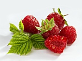 Raspberries with stalks and leaves