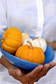 Four small Thai pumpkins in a bowl