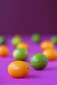 Kumquats and limequats