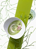 Cream pea soup with trout fillet and dill