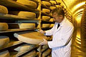 Man testing a Comté cheese in the Fort de Rousse cheese cellar
