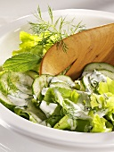 Lettuce with cucumber, dill and cream dressing