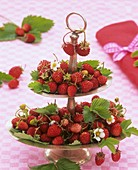 Fresh wild strawberries on a tiered metal stand