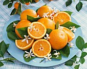 Oranges, orange blossom and leaves on turquoise plate
