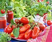 Various types of tomatoes, basil, oregano and tomato sugo