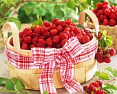 Raspberries in woodchip basket with checked bow