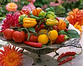 Tomatoes, peppers and chillies in metal dish