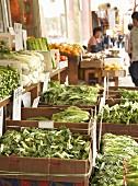 Asiatischer Gemüsestand (Chinatown, Vancouver B.C. Kanada)
