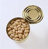 White beans in a tin