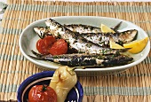 Sarde alla greca (grilled sardines), Sicily, Italy