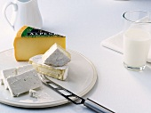 Various types of cheese to ward off osteoporosis