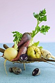 Still life with winter vegetables