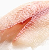 Tilapia fillet (close-up)