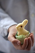 Child's hand holding Easter Bunny in eggshell