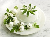 Fresh goat's cheese and ricotta with fresh herbs