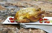 Hähnchen in Rooibostee geräuchert (Südafrika)