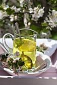 Lemon balm tea in glass jug