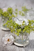 Lady's mantle and rose in glass