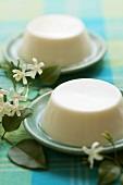 Jasmine panna cotta with jasmine flowers