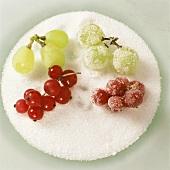 Geeiste Früchte in Zucker wälzen (Tortenverzierung)