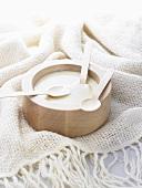 Cream of chicory soup
