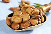 Broad beans in brass scoop