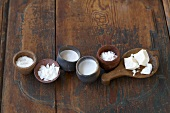 Kokos in verschiedenen Formen (Raspel, Chips, Kokosmilch, Kokoscreme)