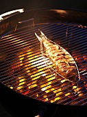 Red mullet on barbecue