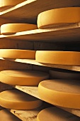 Cheese wheels (Comte) on wooden shelves