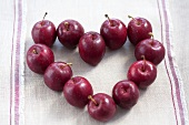 Red crab apples forming a heart