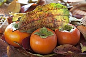 Persimmons with autumn leaves
