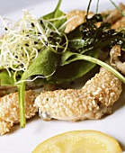 Frogs' legs in sesame coating, salad with orange dressing