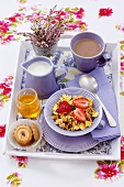 Muesli, biscuits, honey, milk and cocoa on breakfast tray