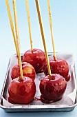 Toffee apples on sticks