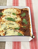 Baked chicken breast fillets in tomato sauce with mozzarella