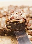Nut brownie on server
