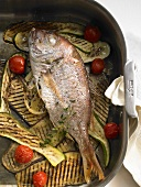 Stuffed sea bream on grilled vegetables