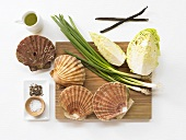 Ingredients for scallops with sauteed cabbage and vanilla oil