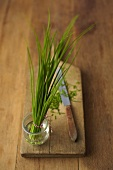 Chives in a bunch and cut on a wooden board