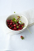 Woodland strawberries in a white bowl
