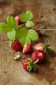 Woodland strawberries on a wooden surface