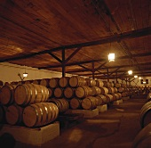 Wine cellar of Coucha y Toro Wine Estate, Chile
