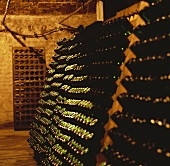 Sparkling wine bottles in pupitre, Rhein Azuga Cellars, Romania