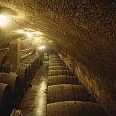 Ein Weinkeller, Maribor, Slowenien