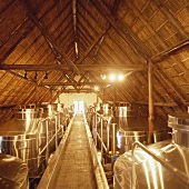 Stainless steel tanks, Rustenberg Wines, Stellenbosch, S. Africa