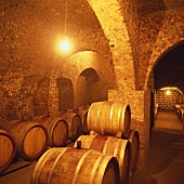 Wine cellar of Tibor Gal Winery, Eger, Tokaj, Hungary