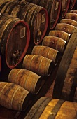 Renato Ratti's wine cellar, La Morra, Barolo, Piedmont