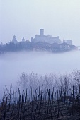 The Barolo village of Castiglione Falletto in mist, Piedmont