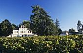The Château, Haut-Nouchet, Graves, Bordeaux, France