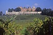 Castello di Brolio,  Ricasoli Wine Estate,  Chianti Classico